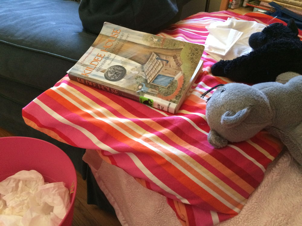 Tissues, toy cats, and Kildee House.
