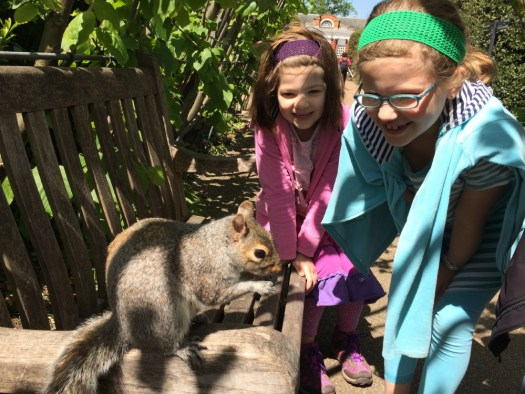 Meeting a squirrel in the Palace Gardens.