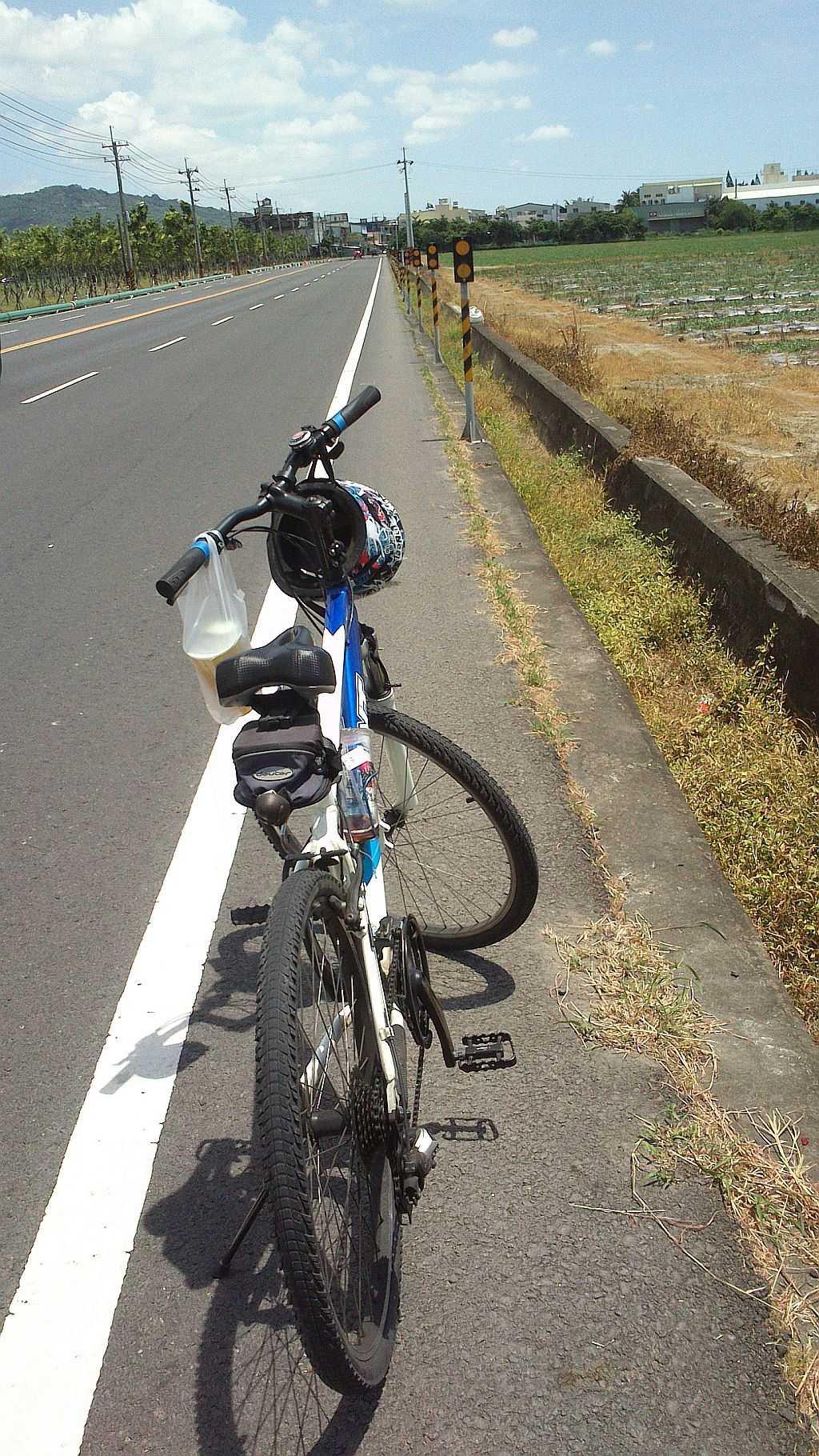 騎單車運動