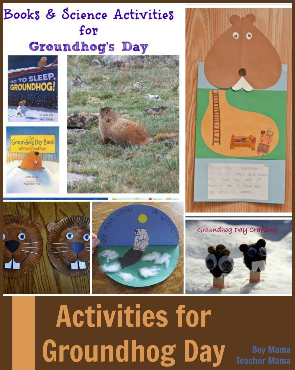 medium resolution of Teacher Mama: Groundhog Day Activities