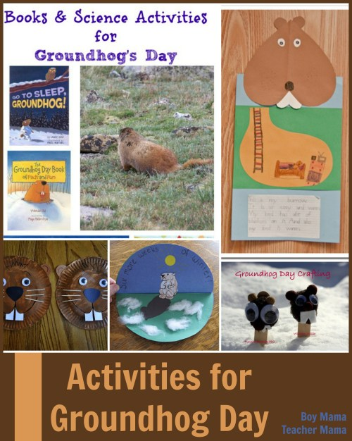 small resolution of Teacher Mama: Groundhog Day Activities
