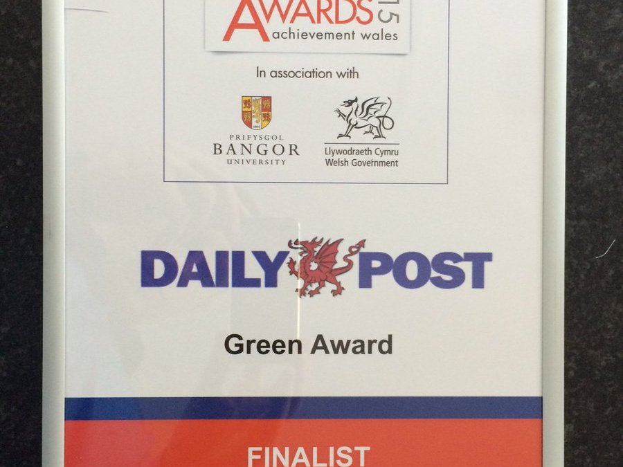 DailyPost Business Awards