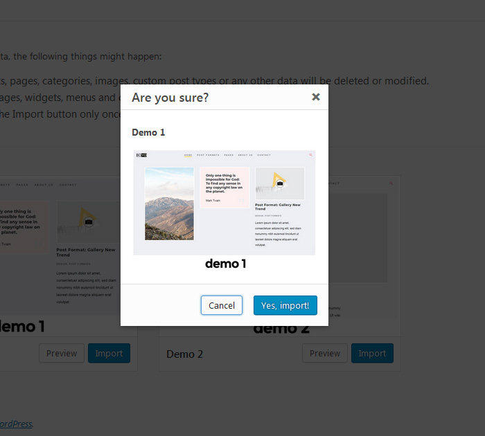 How to import demo in Boyo free WP theme