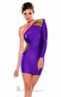 Pretty Purple Hazed Ladies (64)