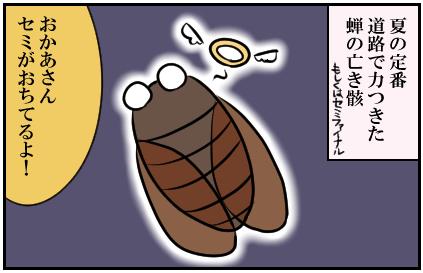 夏定番。道路で力つきた蝉の亡き骸。もしくはセミファイナル。おかあさんセミがおちてるよ!