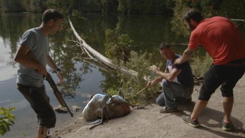 creature lake washed up