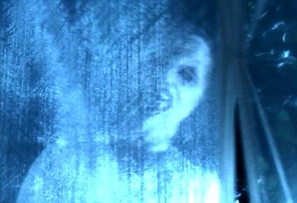 madhouse window freak
