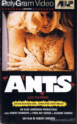 3s-company-ants