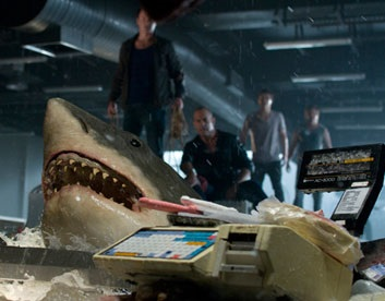 bait shark