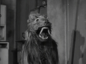 killer shrew creature.jpg