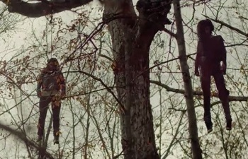 treehouse bodies