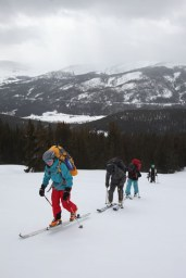 Cross-country ski trek