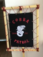 Troop 250 Cobra Patrol