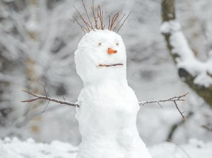 Surprised snowman