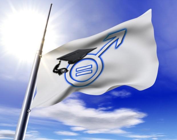 AVFMS Flag