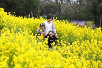 日本親子旅|帶6歲以上兒童的同床收費及訂房搜尋技巧
