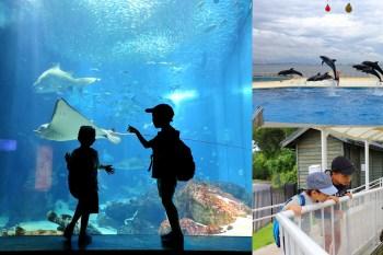 九州海之中道海洋世界|設計新穎人性的美型水族館