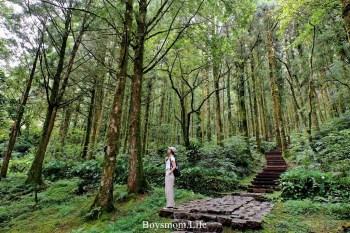 宜蘭大同明池山莊|生態豐富、初階好走的森林遊樂區