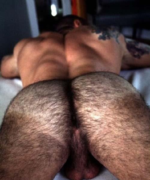 bunda gostosa e peluda macho ao natural