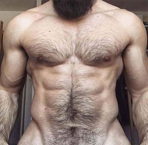 corpo mega sarado peito peludo malhado