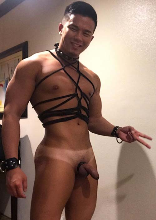 oriental gato sem roupa pelado fetiche gay