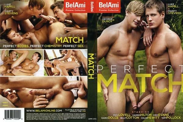 dvd gay perfect match