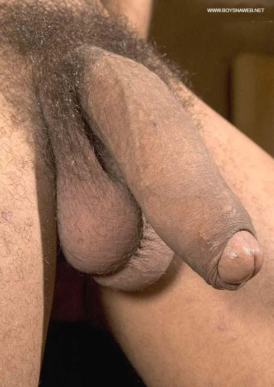 rola macho grande mega peluda pica mole gay amador-min