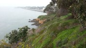 Looking north along the cliffs toward the flatness of Treasure Island.