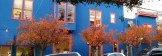 Amazing color contrasts at the Thai restaurant on Castro at 19th.