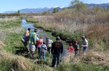Bozeman Cherry River Fishing