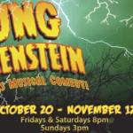 Young Frankenstein at Shane Lalani Center for the Arts from October 20th through November 12th, 2017
