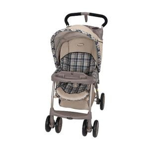 Evenflo Journey Premier Stroller