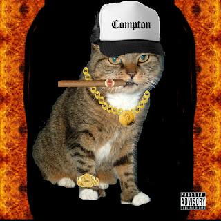 Source: http://imsosorryforthis.blogspot.com/2007/02/rap-cat-controversy.html