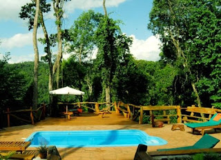Hotel en la selva