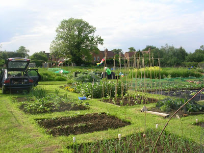 Allotments in Gloucester UK