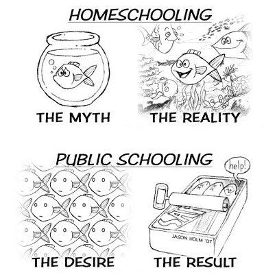 Christianity Lived Out: Homeschool Cartoon