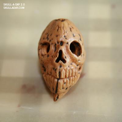 """Résultat de recherche d'images pour """"picture almond skull"""""""