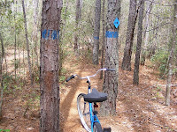 Narrow path on the mountain bike trail at Sesqui Park Columbia