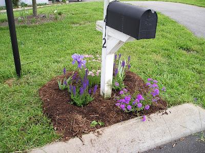 growing home garden mailbox