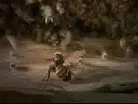 當蜜蜂遇到虎�蜂侵襲時