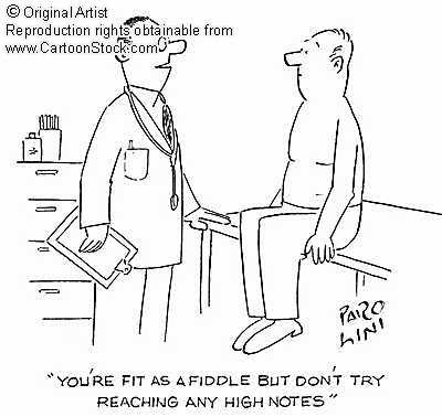 CMP 272 FALL 07 IDIOMS: Fit as a Fiddle