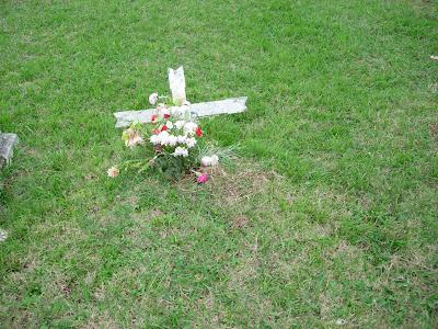 2 DE NOVIEMBRE DIA DE MUERTOS ALTAR Y OFRENDAS ARBOL DE LA VIDA PATZCUARO JANITZIO MIXQUIC (3/3)