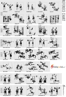 all bodyworkout guide: Workout charts for body