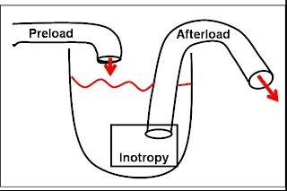 NCLEX Review: Cardiac Output made EZ