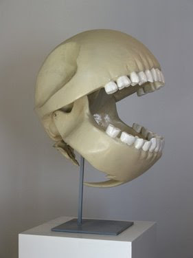 Pac Man's Skull Exposed to syndication