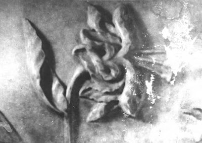 The OM in the flowers on the walls