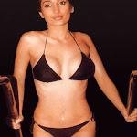 Hot Bollywood & Hollywood Actress Photos