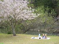 Romantic Picnic at Columbia Riverfront Park