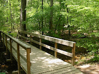 Bridge over perennial creek