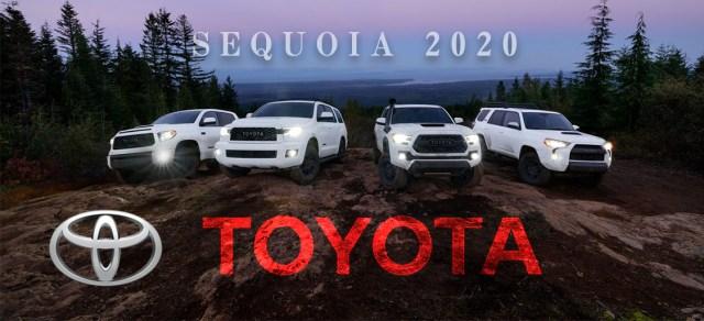 US トヨタ セコイヤTRD PRO 2020 (US TOYOTA Sequoia)